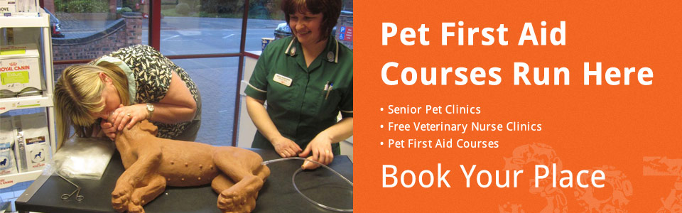 Pet First Aid Clinics